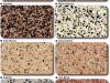Epoxy Coated Floors Speckled Color Chart